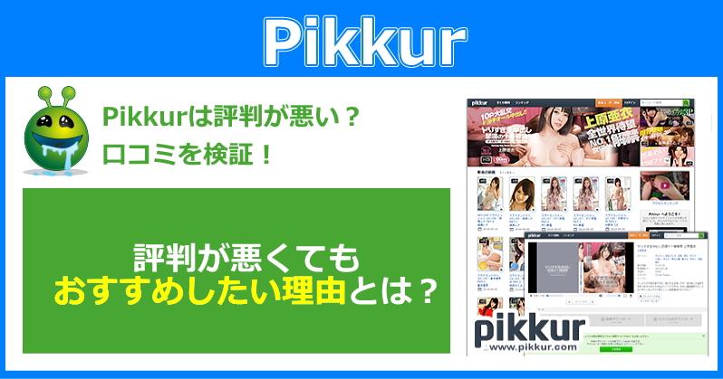 Pikkurはスカイハイエンターテインメントを見たい人におススメの動画配信サービスだ!